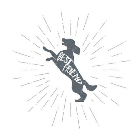 Hand drawn vintage dog. Sketch style. Vector illustration. T-shirt print. Poster. Logo. Hipster. Retro badge. Emblem. Friend