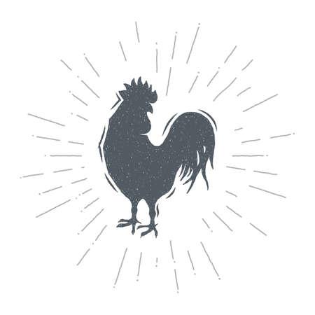 Hand drawn vintage cock. Sketch style. Vector illustration. T-shirt print. Logo element. Chicken. Ilustração