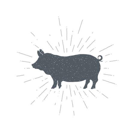 Hand drawn vintage pig. Sketch style. Vector illustration. T-shirt print. Poster. Logo. Retro badge. Piglet. Pork. Meat Ilustração