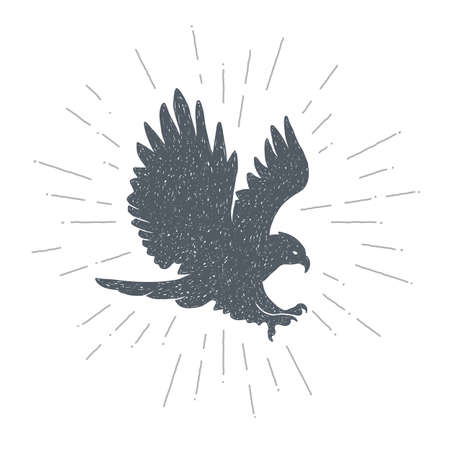 Hand drawn vintage eagle. Sketch style. eagle. hawk. Falcon. Predator. Bird. Vector illustration. T-shirt print. Poster. Hipster.