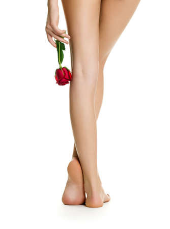Beautiful women legs photo