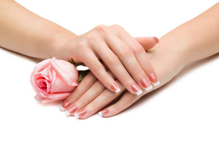 Women s hands with a rose photo