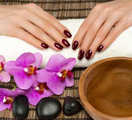 beauty spa: Hand care and manicure in the salon spa Stock Photo
