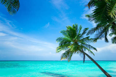 Perfect tropical island paradise beach photo