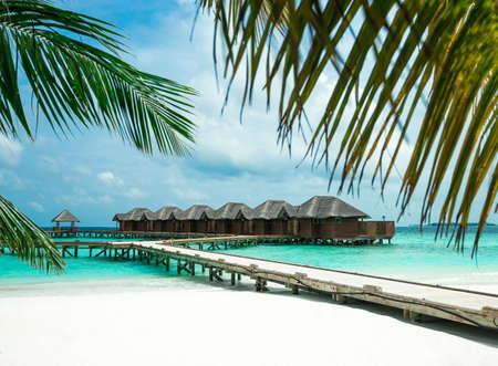 完璧な熱帯の島の楽園ビーチ