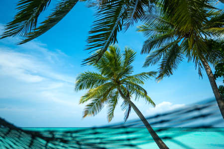 Perfect tropical island paradise beach Stock Photo - 21015122