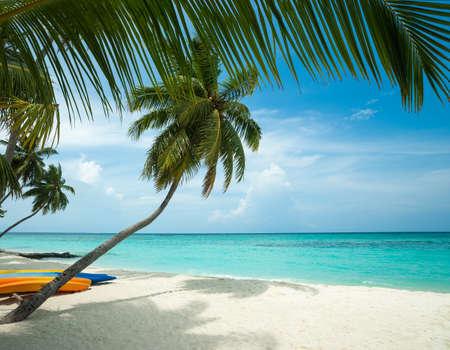 Parfait plage tropicale île paradisiaque