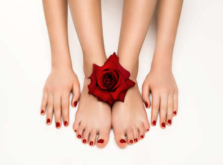 Beautiful manicure and pedicure with a rose photo