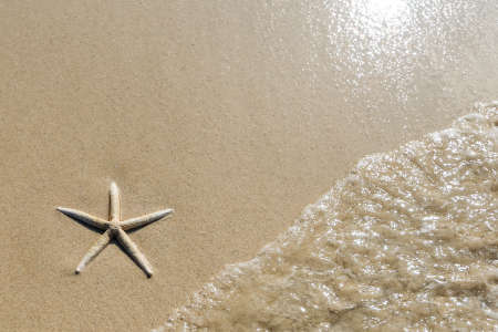 Overhead view of a starfish and wave on a smooth background of sand  Beautiful beach  photo