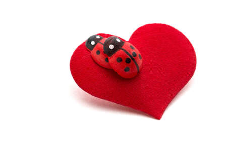 Love making ladybugs couple on the red heart   Creative concept card for Valentine s day photo