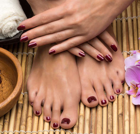 Pedicure and manicure in the salon spa, hand and feet care photo