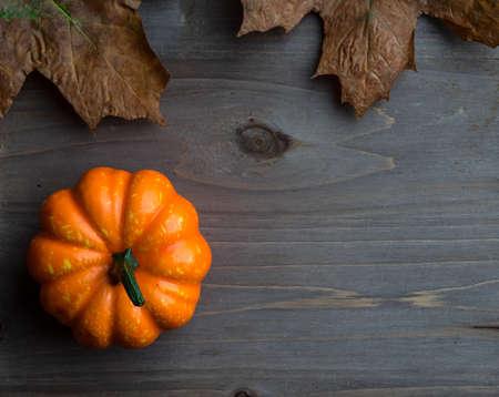 Autumn pumpkin on wooden board photo