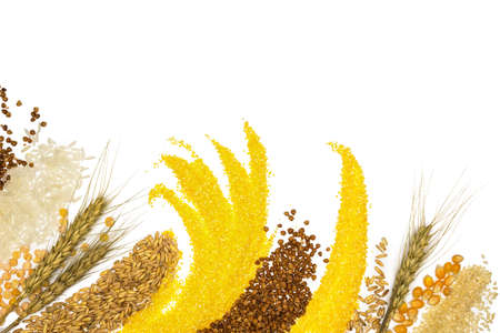 Cereals - maize ,wheat, buckwheat, millet, rye, rice and peas photo