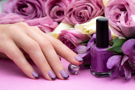 Beautiful manicure, polish is a violet color. Flower background. photo