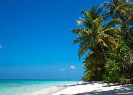 white sand: beautiful beach and tropical sea Stock Photo