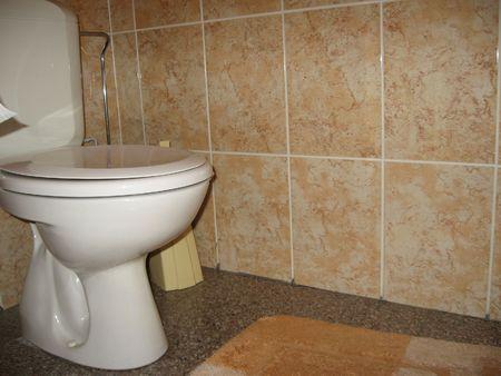 Toilet Stock Photo - 3865972