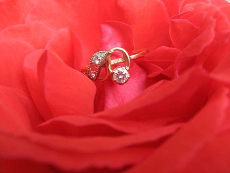 Ring Stock Photo - 5090213