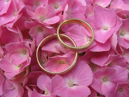Rings Stock Photo - 5090292