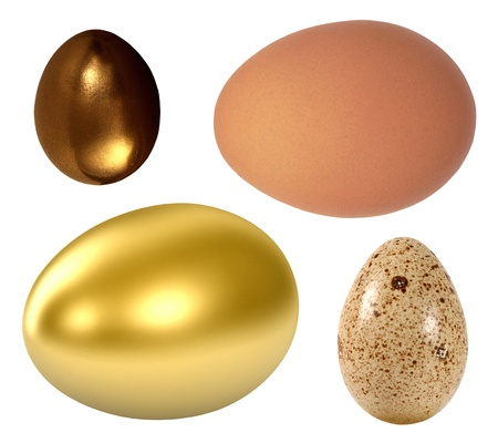 priceless: Egg isolated on a white background