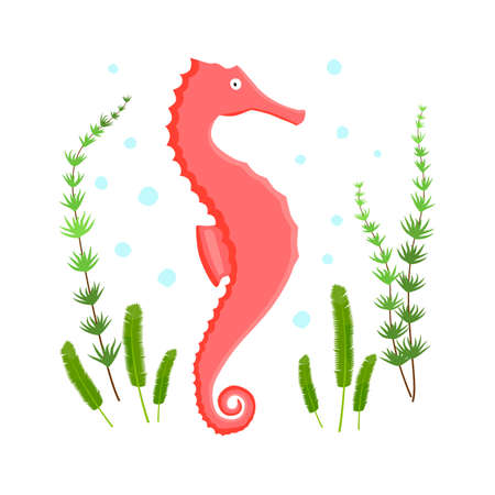 seahorse character with spots and algae on white background.