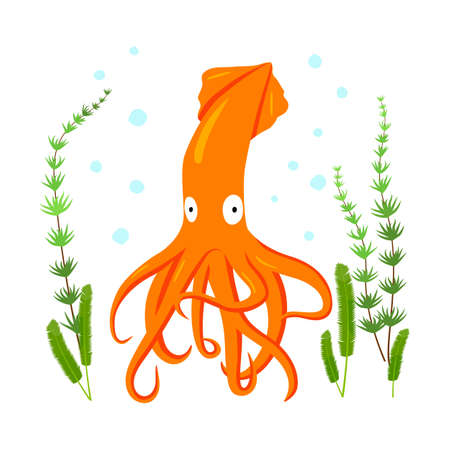 Squid flat character with spots and algae on white background.