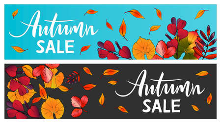 Vector horizontal banner Autumn Sale Lettering with leaves 일러스트
