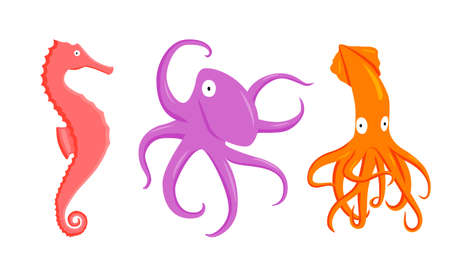 set of vector illustration flat cartoon coral seahorse, purple octopus, orange squid flat character on white background. Cartoon animals for design, background, card, print, textile, paper Ilustração