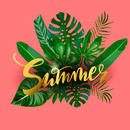 hand drawn lettering Summer on tropical leaves, palms, monstera leaf, floral background. White text on green and coral background for banner, greeting card, post, a print for a tshirt Imagens - 148236958
