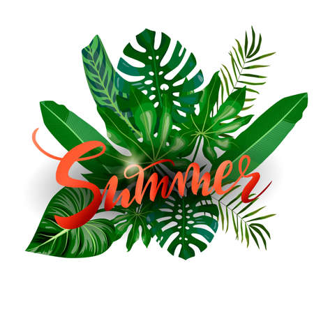 hand drawn lettering Summer on tropical leaves, palms, monstera leaf, floral background. Red text on green background isolated for banner, greeting card, post, a print for a tshirt Ilustração
