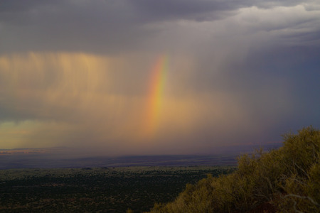 Stormy brilliance atop a cinder cone in the Coconino National Forest.