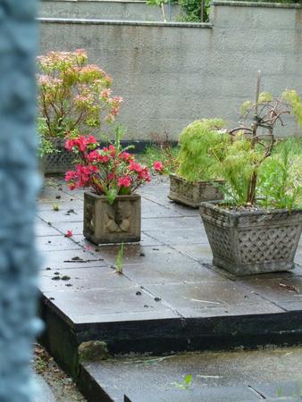 jardineras: Patio jard�n mojado con jardineras de piedra y arbustos