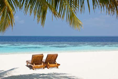 Sun loungers on the beach photo