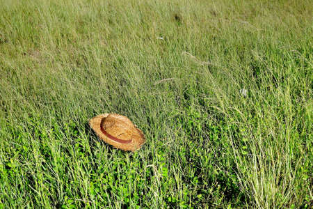 straw the hat: Straw Hat on grass field