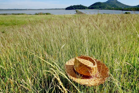 chapeau paille: Straw Hat on grass field, Banque d'images
