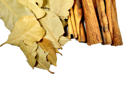 bay leaf: cinnamon sticks and bay leaf on white background Stock Photo