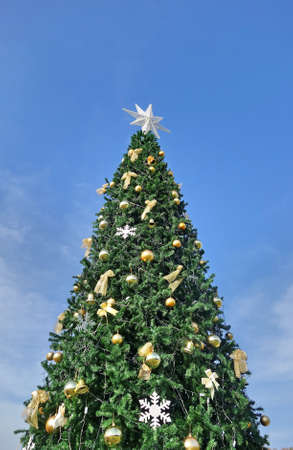 christmas shopping: Christmas tree against blue sky Stock Photo