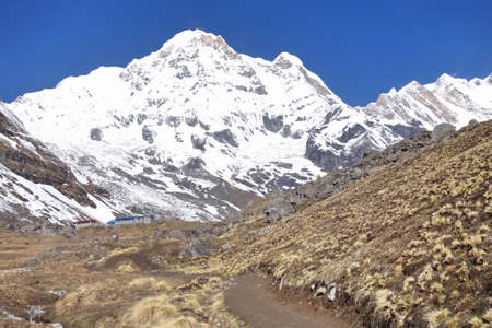 Trekking pathway to Annapurna Base Camp with snowy mountain massif in background, Nepal.