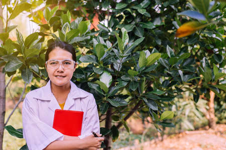 Asian woman researcher standing and examining plant with study data in the garden