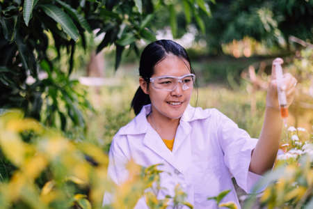 Asian woman researcher using syringe for examining and study information data in the garden,Selective focus