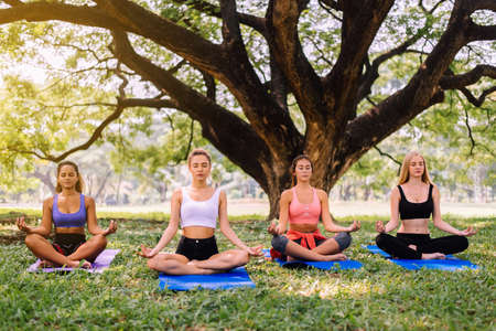 Group of young woman doing yoga at park in the morning,Female friend exercising on green grass with yoga mat