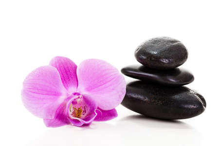 spa stones: Purple orchid on white background