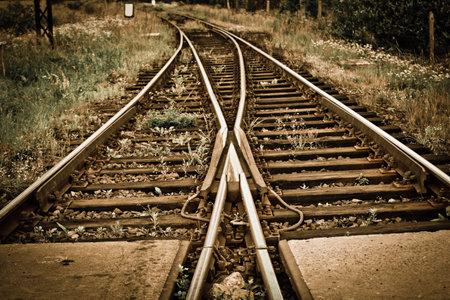 rail cross: Railroad tracks