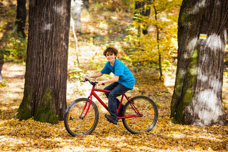 Urban biking - teenage boy and bike in city park Stock Photo - 18812305