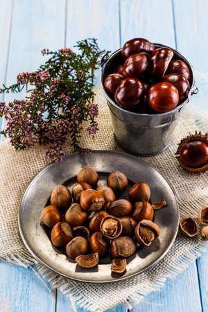 Hazelnuts and chestnuts Stock Photo