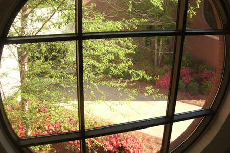 stairwell: View from stairwell window of summer foliage. Stock Photo