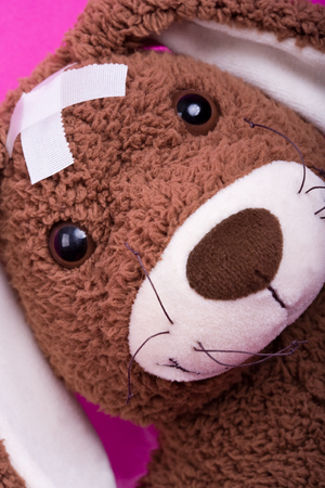 convalesce: Closeup of cuddly-toy (rabbit) with two white patches on his head. He is ill.