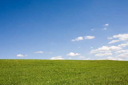 Clean Summer landscape - green meadow with blue sky and white clouds. Idyllic.