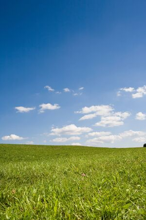 Summer landscape - green meadow with blue sky and white clouds. Idyllic. Stock Photo