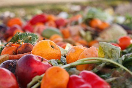 desechos organicos: Assorted mildewing frutas y verduras en un mont�n de compost.