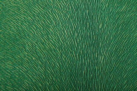 structured: S�lo una estructura de fondo verde